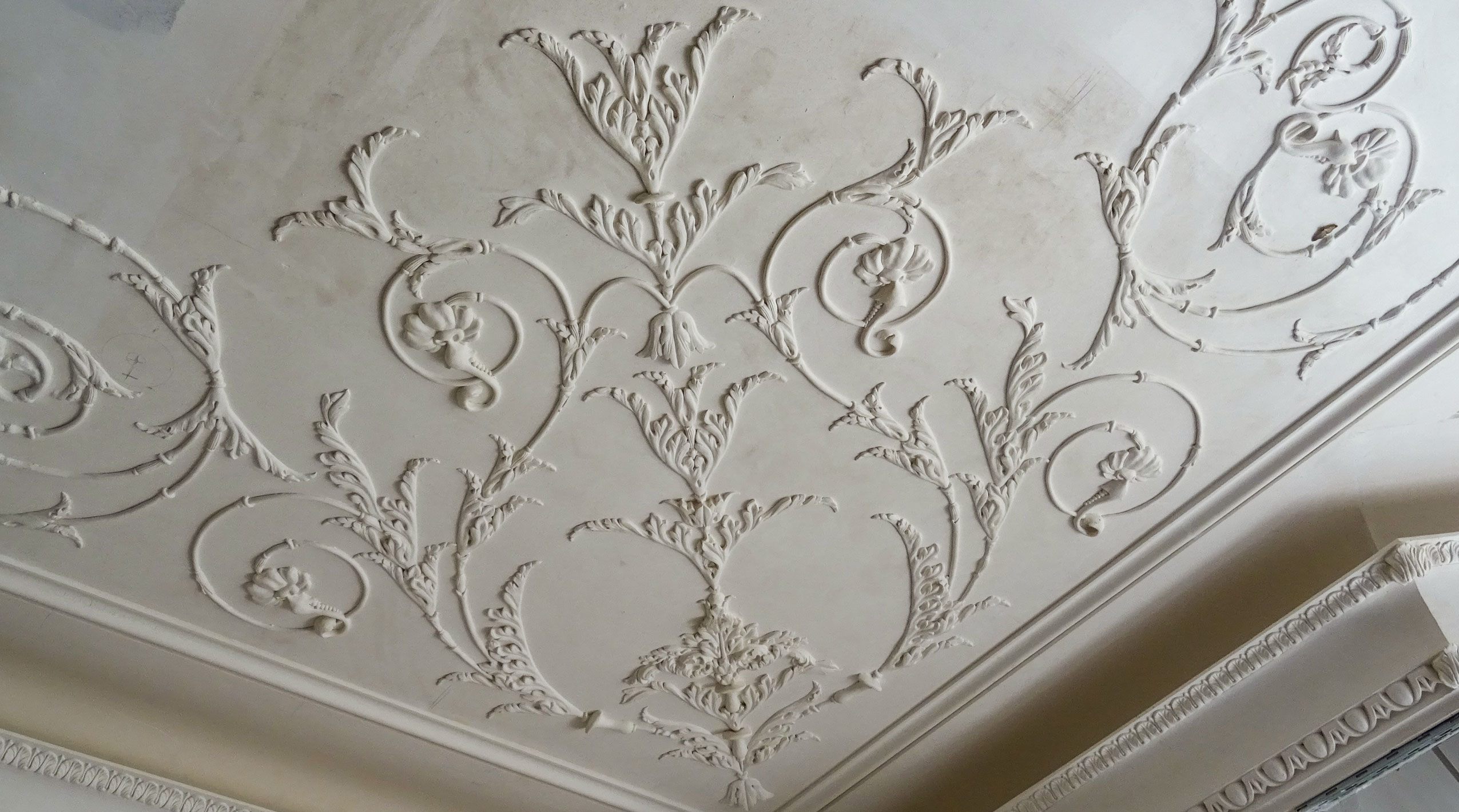 Foliage Ornamentation in Plasterwork